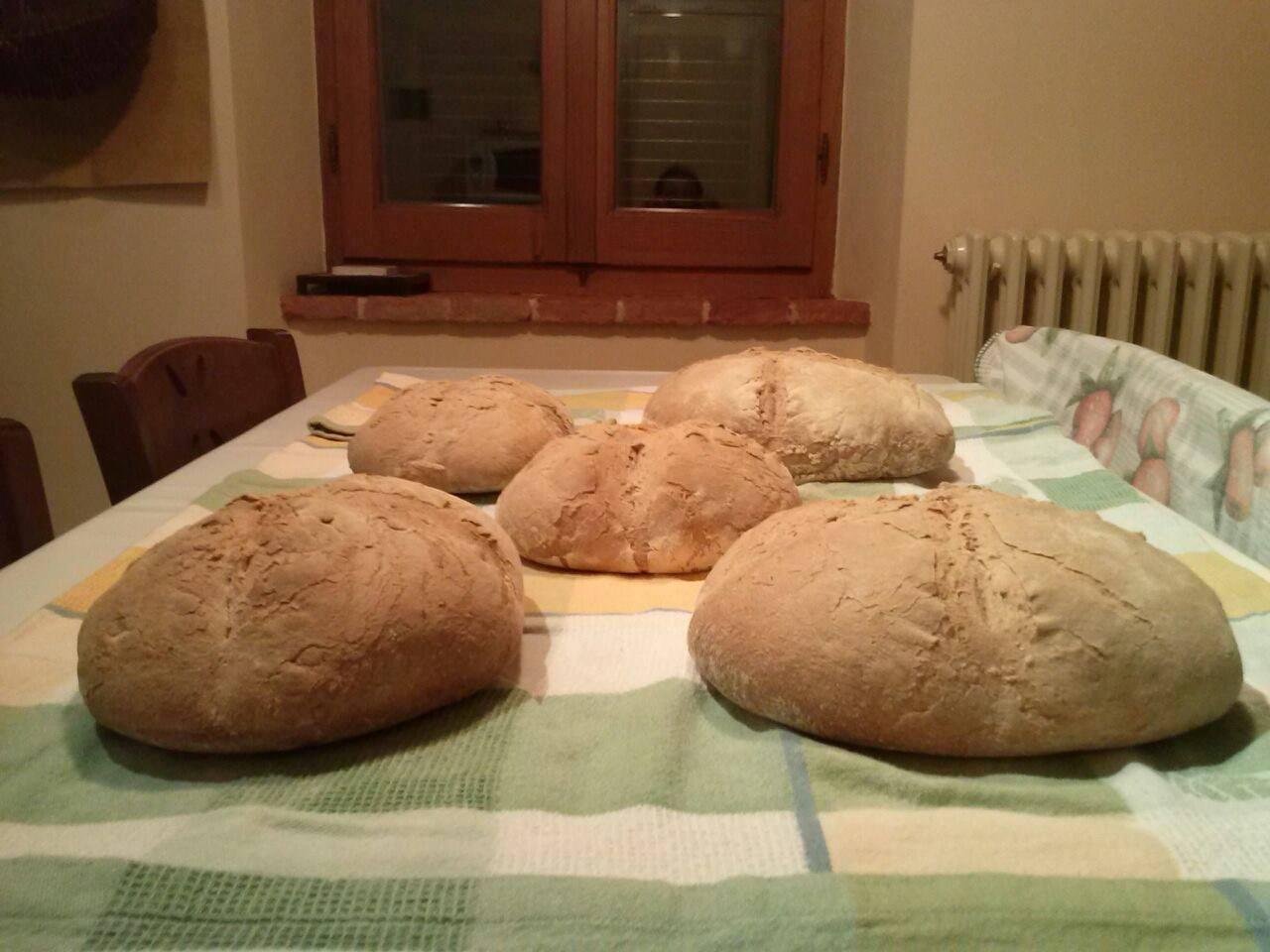 La Gastronomia tradizionale di Cortona e della Valdichiana